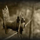 Mark Webb - 'Rustic Tension' - Killarney Camera ClubHonourable Mention - Projected - Intermediate