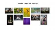 1st Place Colour Print Panel - Cork Camera Group