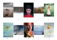 Second Colour Print Panel  - Wexford Camera Club