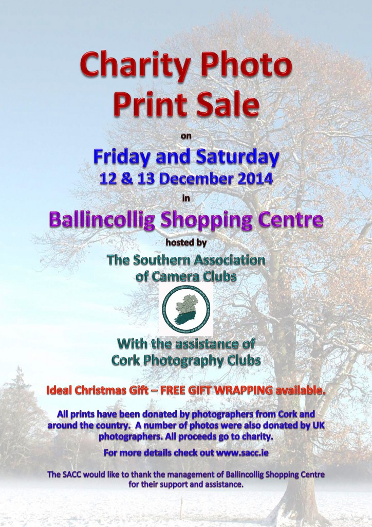Charity Photo Print Sale Poster 2