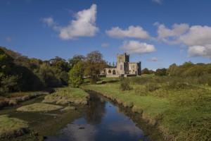 Tintern Abbey (1 of 1)