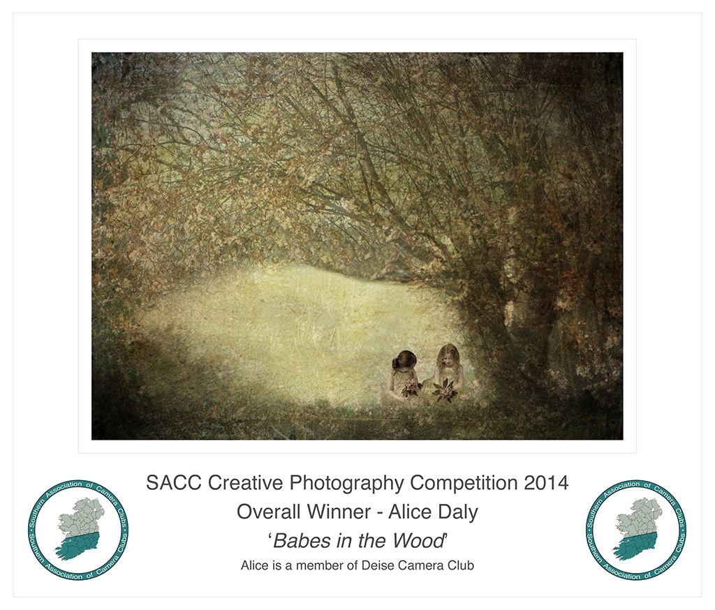 Alice Daly - 'Babes in the Woods' - Deise Camera ClubGold Medal & Overall WinnerProjected - Intermediate