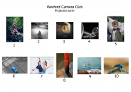 3rd Place Projected Image Panel - Wexford Camera Club