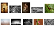 First Projected Image Panel - Blarney Photography Club